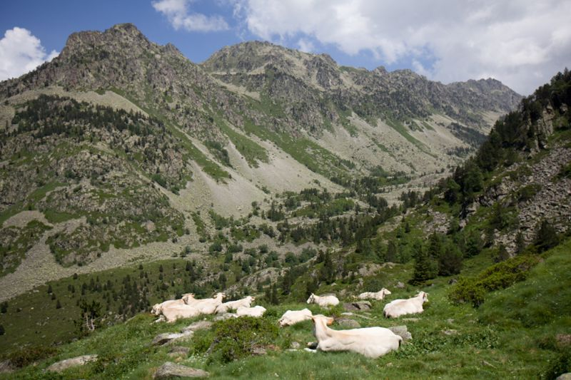 Camping bareges