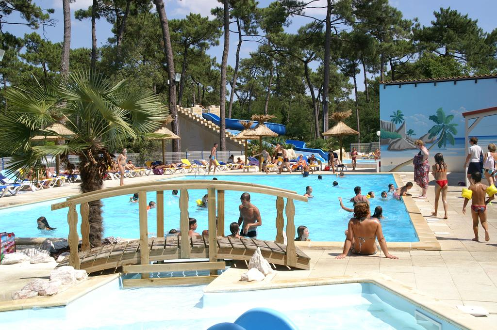 Le dauphin camping