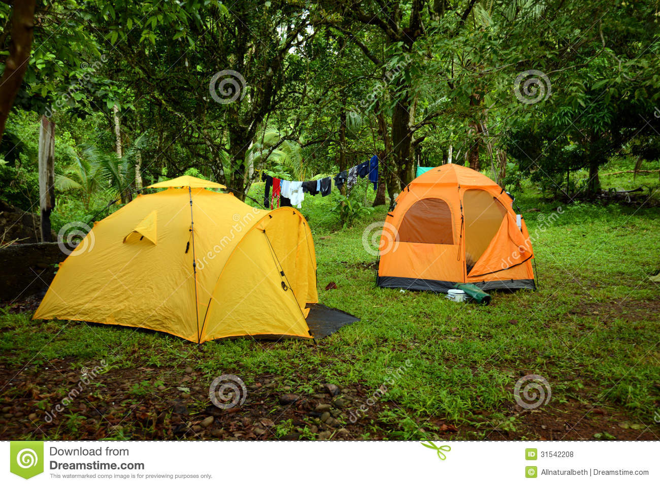 Camping on line